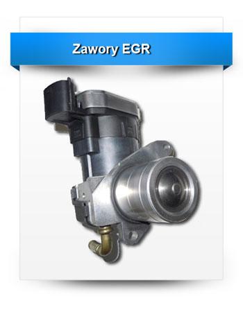 zawory-egr-3